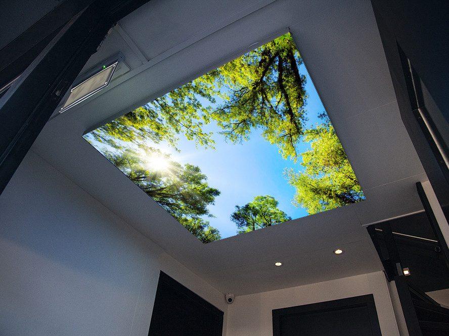 verlicht-plafond-forest.jpg